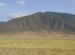 300px_Ngorongoro_Crater_animals.jpg